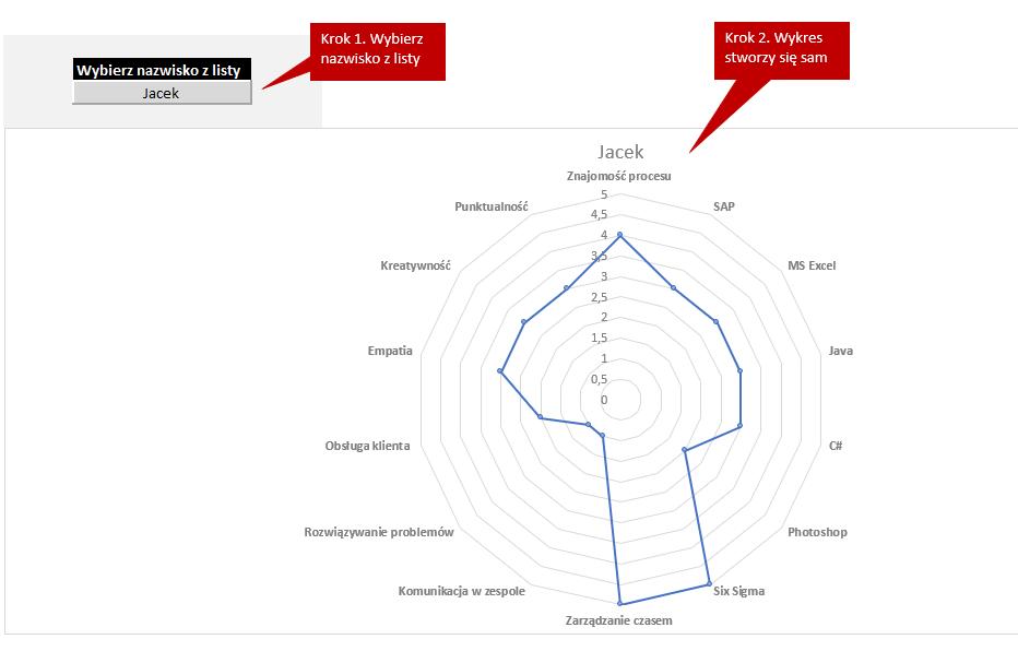 matryca kompetencji radar chart